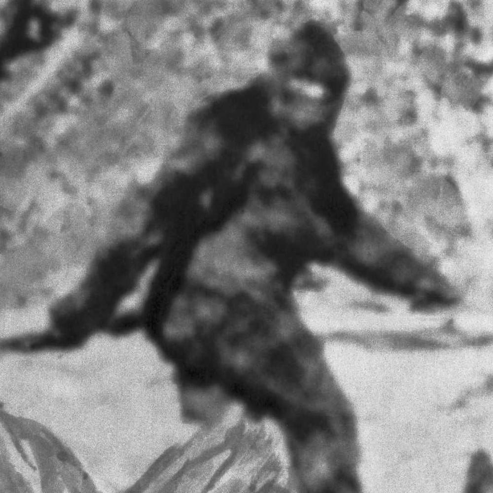 Famous photo of bigfoot