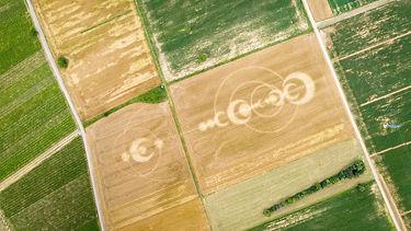Banner Image of Crop Circles