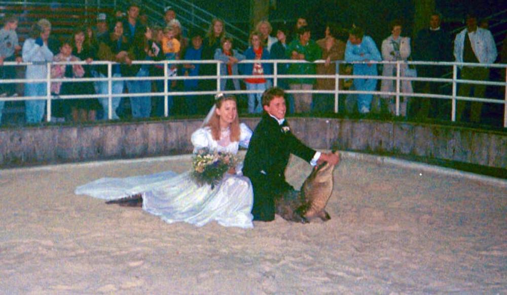Gator Crusader Gator Pit Wedding