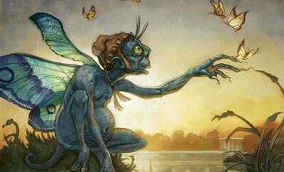 Irish fairies (Fae)