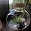 Thumbnail: Glass ball terrarium with air plant