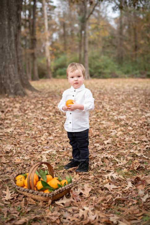 children, boy, oranges, satsumas, basket, baton rouge, meagan stone photography, lifestyle photography, brand photographer, family photographer, fall