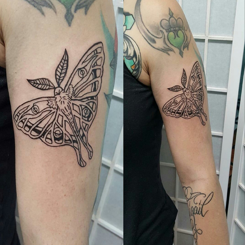 Moth (1st session)