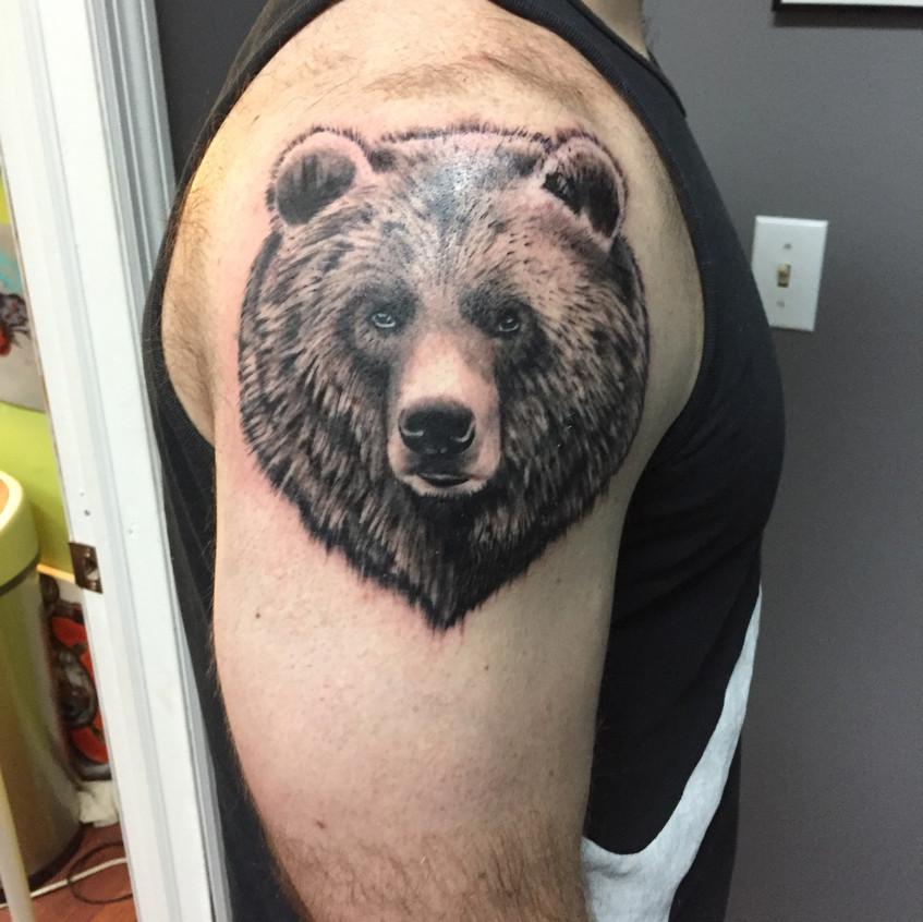 In Progress Bear