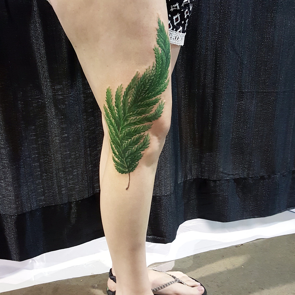 Here is a fern that wraps from upper calf to thigh.
