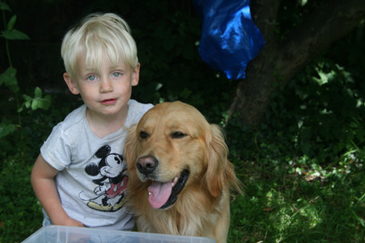 Boris de hond