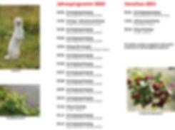 Jahresprogramm2020_2_edited.jpg