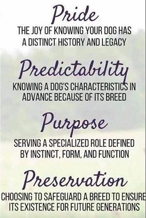 pride-predictability-purpose-preservatio
