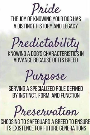 pride-predictability-purpose-preservatio