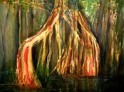 Arvores Amazonia