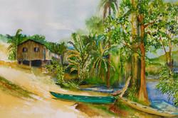 _O rio que lhe passa à porta é estrada para toda a Terra_(Euclides da Cunha, em 'Paraíso Perdido')