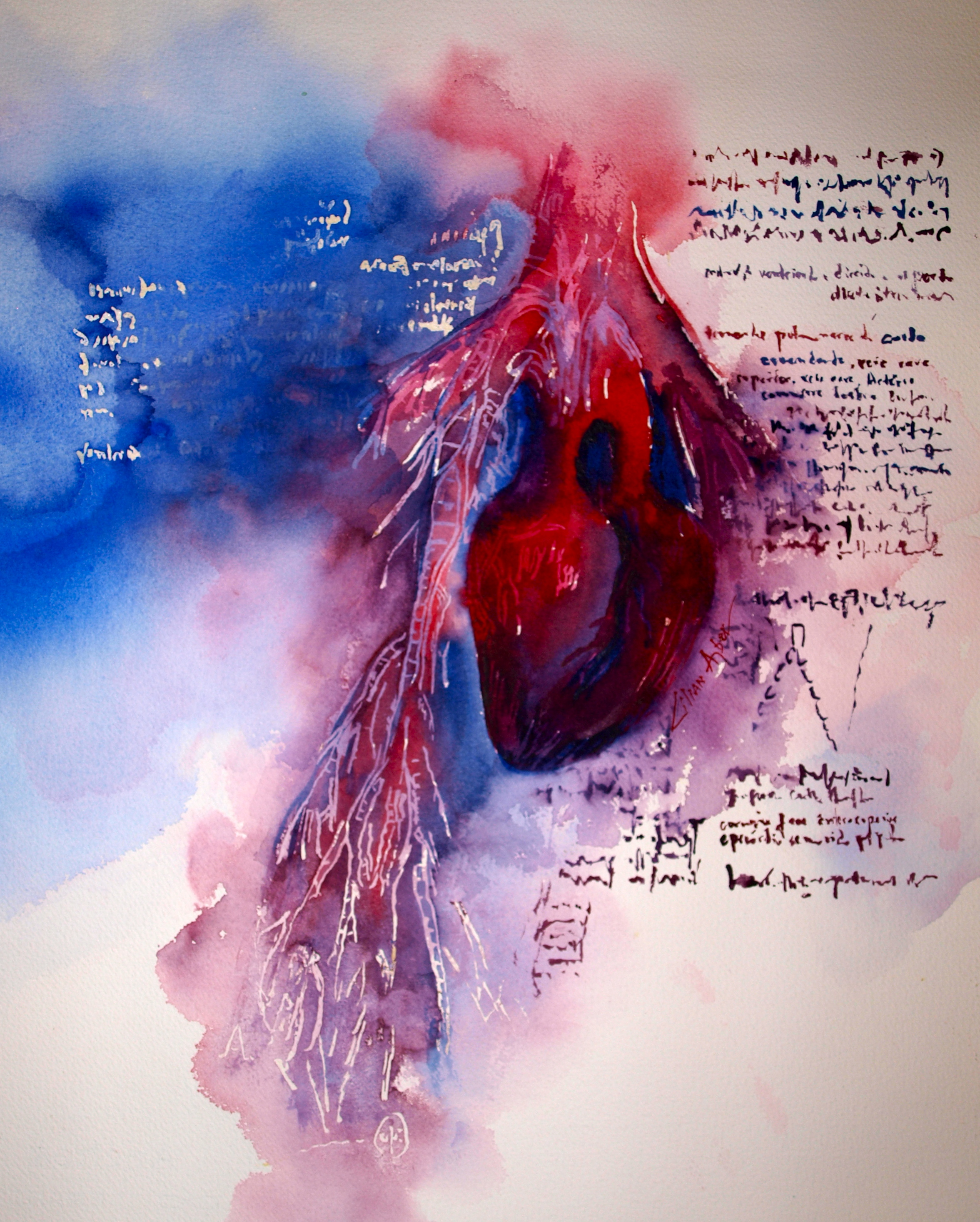Coração de Da Vinci