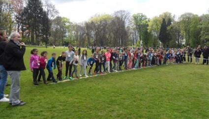 Stancross in park Den Brandt