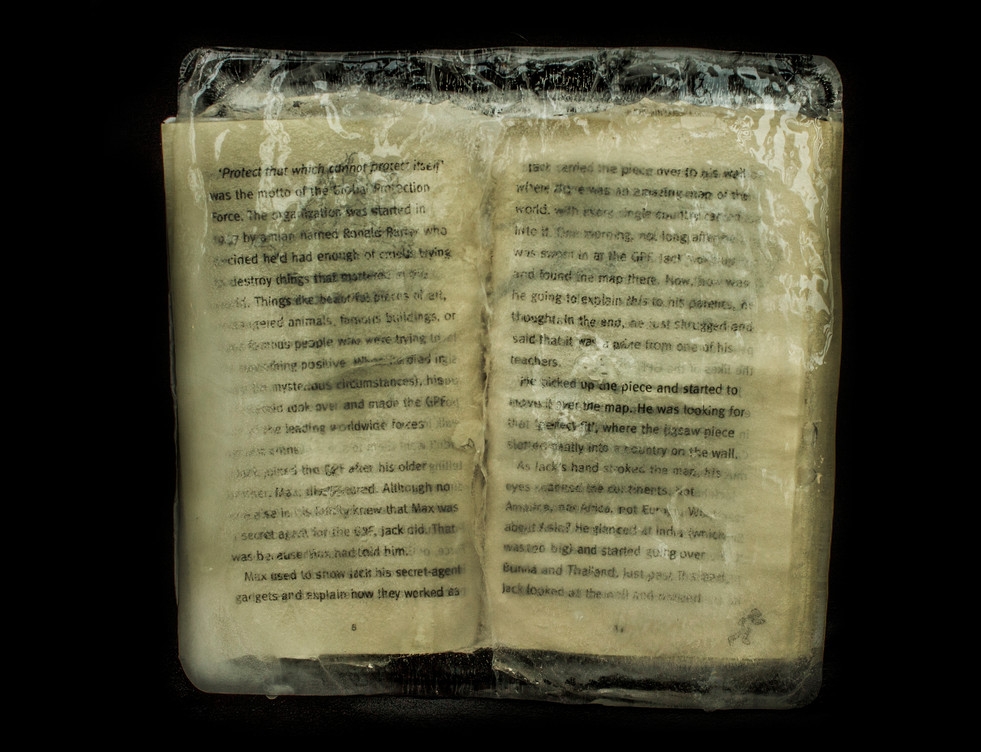 frozen book more black.jpg