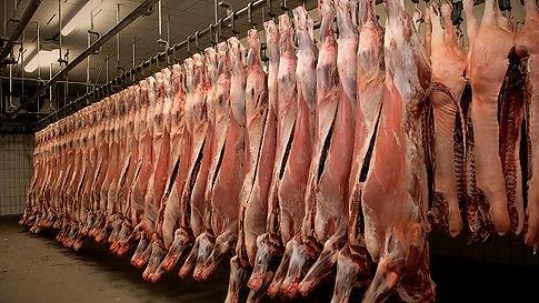 industry-meatprocessing_edited.jpg