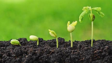 agricultureindustry.jpg