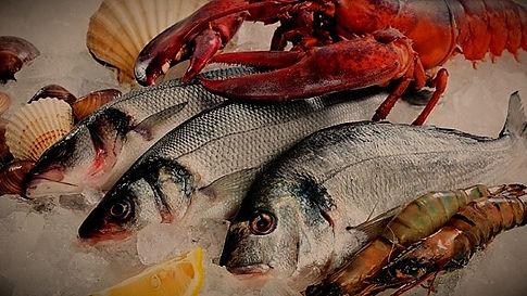 industry-fishandseafood_edited.jpg