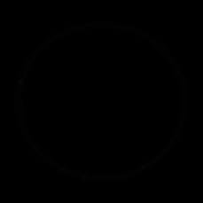 Logo de Botini Accessories PNG