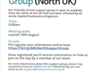 AML - Virtual Support Group