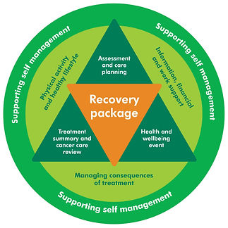 Information about the Macmillan recovery package.