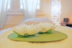 Lotus auf Liege.jpg