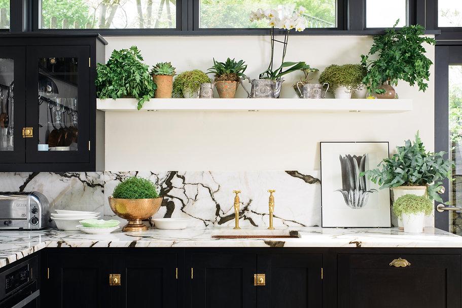 Kitchen design with plants. Black kitchen cabinets.