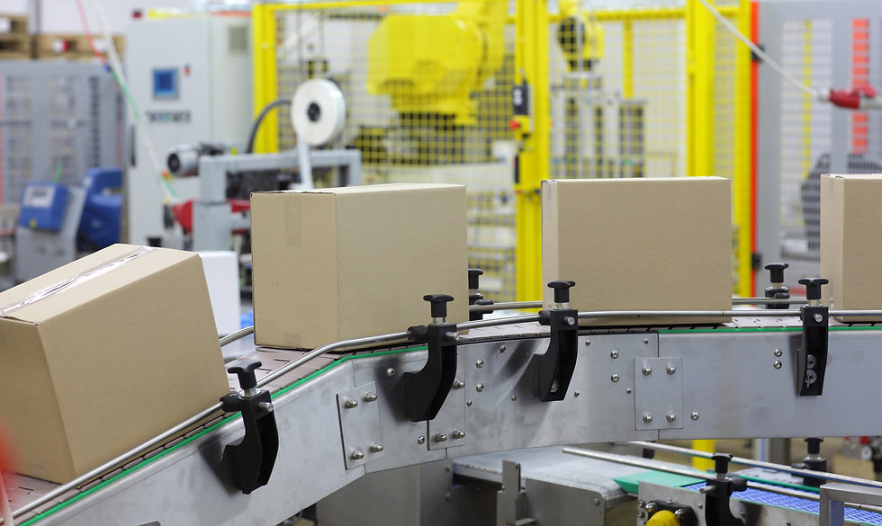 automation - Cardboard boxes on conveyor belt in factory.jpg