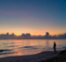 Canva - Silhouette of a Person Near Coconut Tree on Shore during Golden Hour_edited.jpg