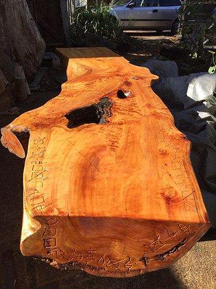 Unique Piece of Cypress