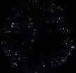 CNWSMT logo_transparent.png