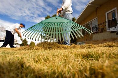 Landscape Maintenance - 05