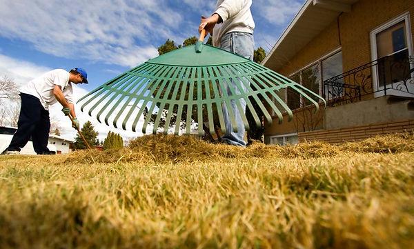 People raking lawn
