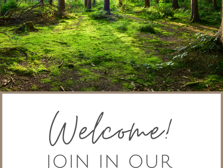 Welcome! Join In Our Adventures.