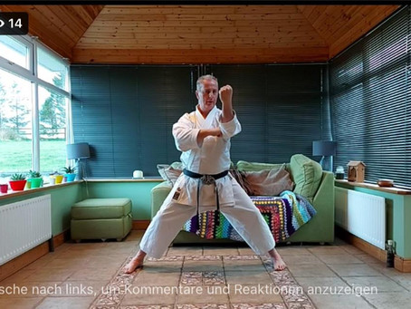 Shotokan Kata Online-Session