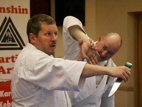 Nihon Taiho-Jutsu Instructor Lehrgang Level II in Irland