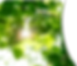 DQ-header-image-1.1.5.png