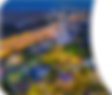 DQ-header-image-3.1.3.png