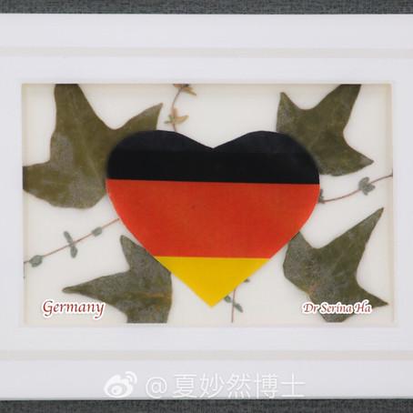 #同心抗疫 culture of unity - Germany #在家藝術 在家抗疫、押花 治癒心境 #賞花治癒人生系列 10 #用心押  #賞花治癒人生  押花齊抗疫  #德國