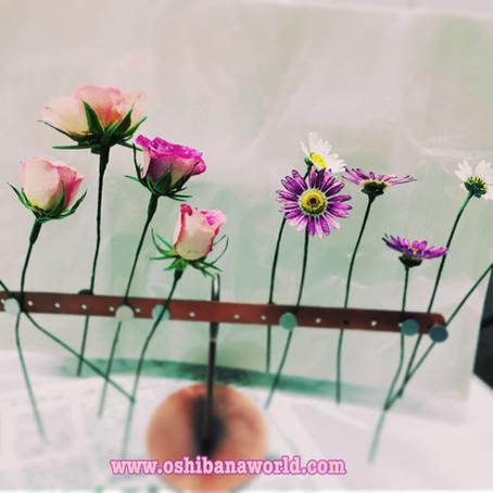 Dry Flower preparation     レカンフラワー
