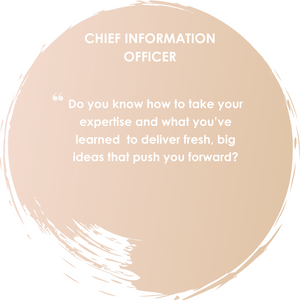 Description of a CIO - Jackie Mitchell Career Consulting