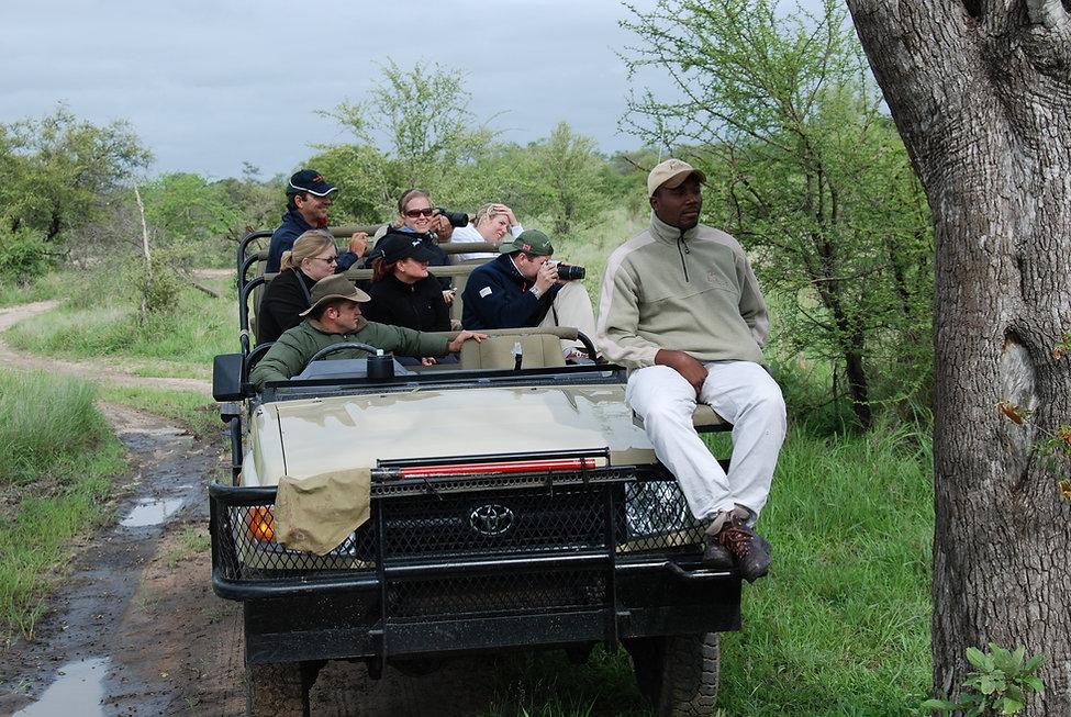South-AJfrica-game-safari.jpeg (Copy).JP