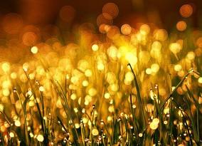 Meditação dos Sete Raios - Raio Dourado