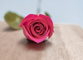 Meditação dos Sete Raios - Raio Rosa