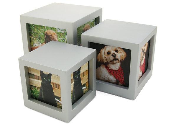 Photo Cube: Md (Pets 25-50 lb)