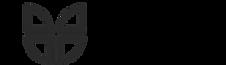 logo capema_edited_edited.png