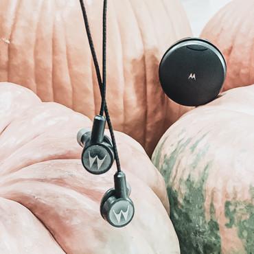 Tech3_Pumpkin.jpg