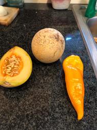Cornito Pepper & Farthest North Melon Mix