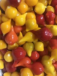 Biquinho Peppers
