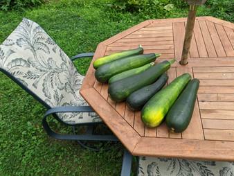 Jim's Garden Harvest