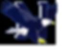 Nazareth Eagle Logo